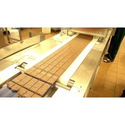 Линия для производства фруктово-ореховых батончиков
